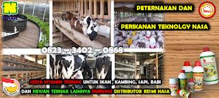 Sedia Viterna NASA Di Kabupaten Aceh Besar 081360421856