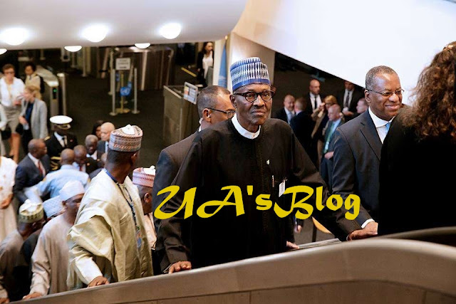 Buhari Convenes Meeting Of Heads Of State And Government Of Lake Chad Basin Commission