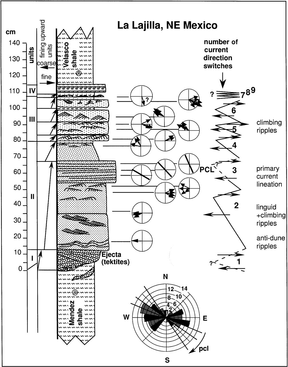 Dawn's Sed Strat Lecture Notes: Chronostratigraphy