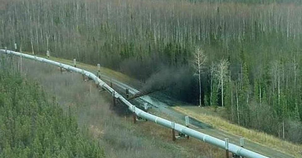 Rotten Egg Smell >> White Wolf : Alberta Oil Spill: Up To 3,000 Barrels Spill Near Red Deer River (Video)