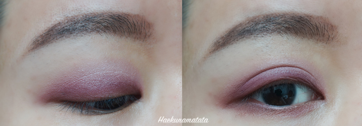 Coastal Scents Revealed 2 Palette Tutorial, Swatches, and Review