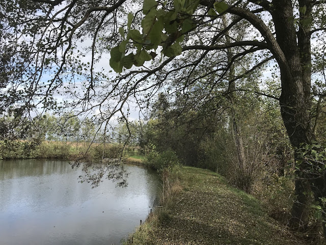 Franken, Karpfenweiher, Herbst