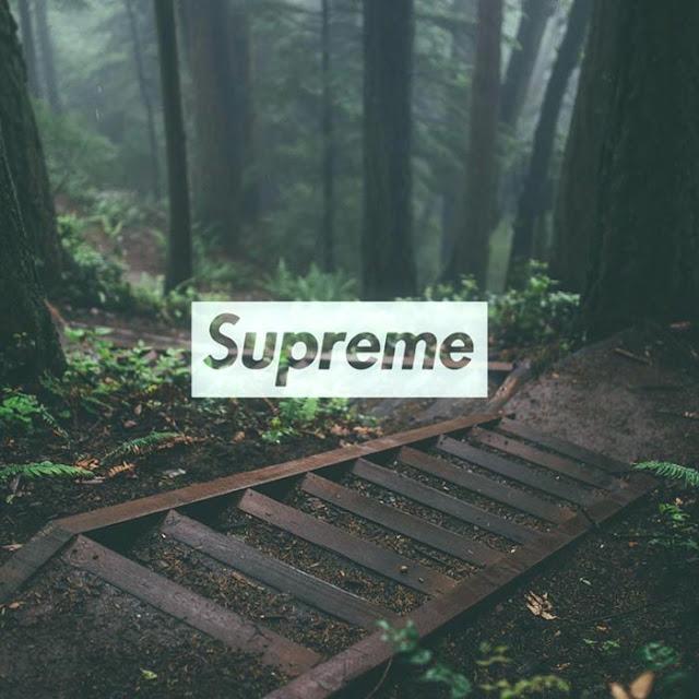 Supreme Forest V2 Wallpaper Engine