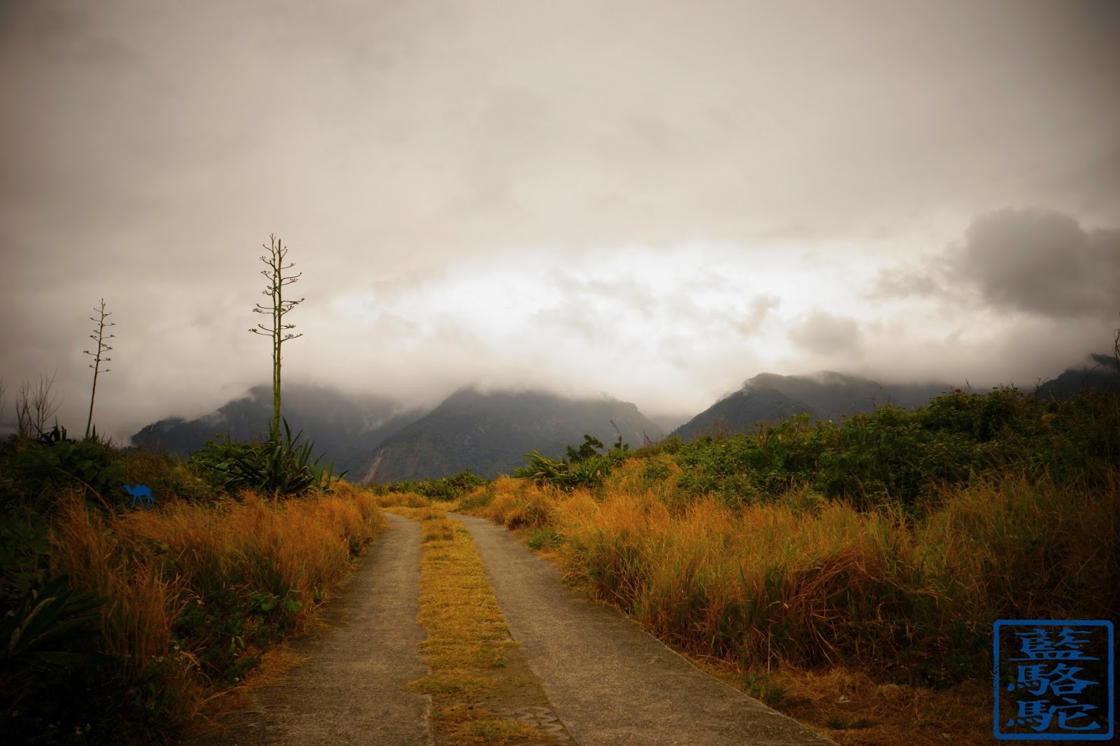 Le Chameau Bleu - Blog Voyage Taiwan - Chemin vers les cotes de Du Lan- Tourisme Taiwan voyage