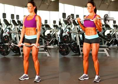 Biceps curl with bar, standing