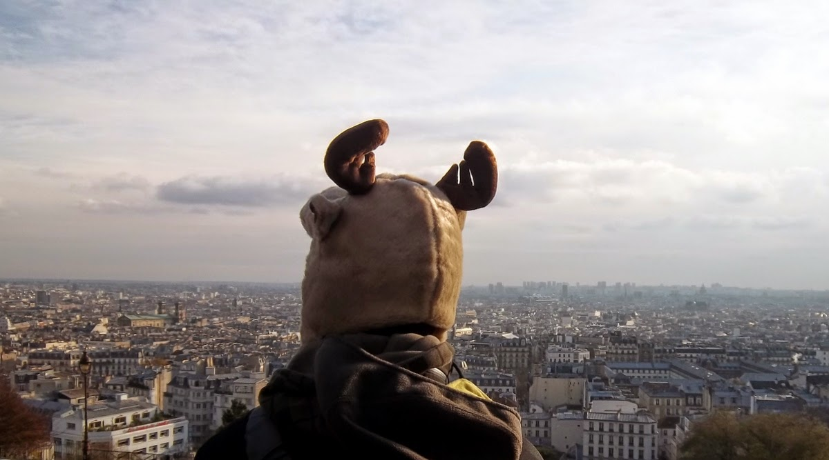 biologo buscando piso en Paris