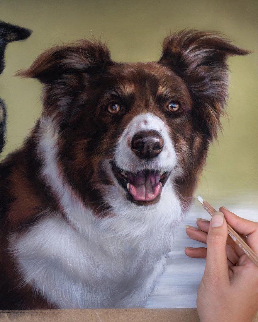 10-Kodiak-Patricia-Otero-Cats-and-Dogs-Portrait-Artist-www-designstack-co