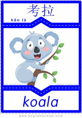 Koala - English-Chinese flashcards for wild animals topic
