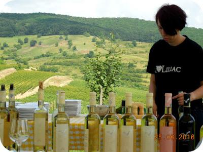 Paula Bota si vinurile Liliac