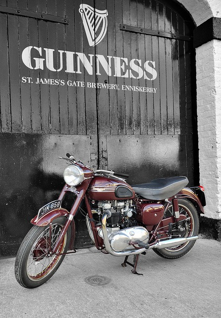 Guinness Triumph