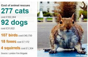 Open Data can help us work out how much London Fire Fighters spend on defenseless kittens