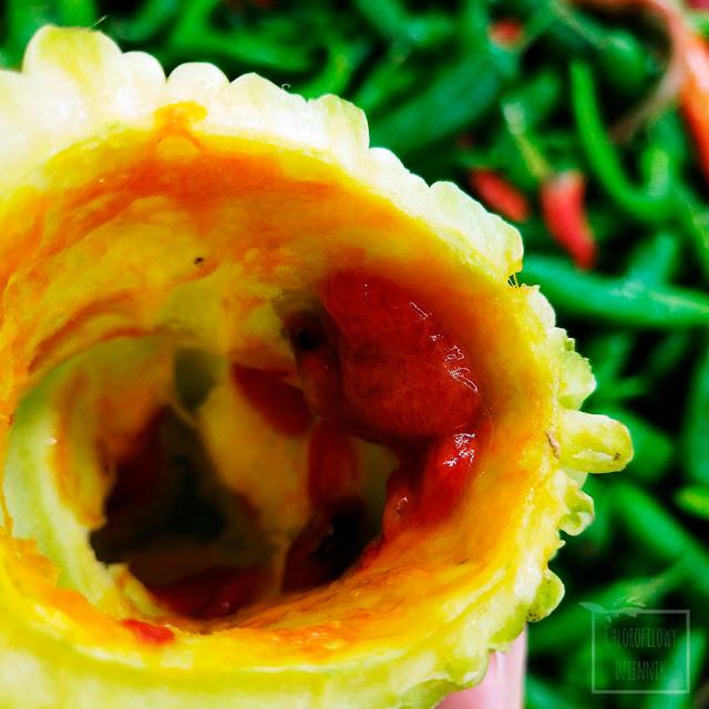 Przepękla ogórkowata (Momordica charantia), balsamka, karela, bitter gourd, bittermelon, kugua. Dziwne azjatyckie warzywa, chińska medycyna naturalna, ciekawostki z azjatyckiej kuchni, ciekawe rośliny uprawne z Chin, z rodziny Dyniowatych, egzotyczne pnącza, warzywa, cukrzyca.