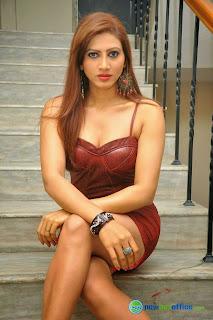 Rishika Singh in Brown Latex Dress Spicy Pics HQ Must see