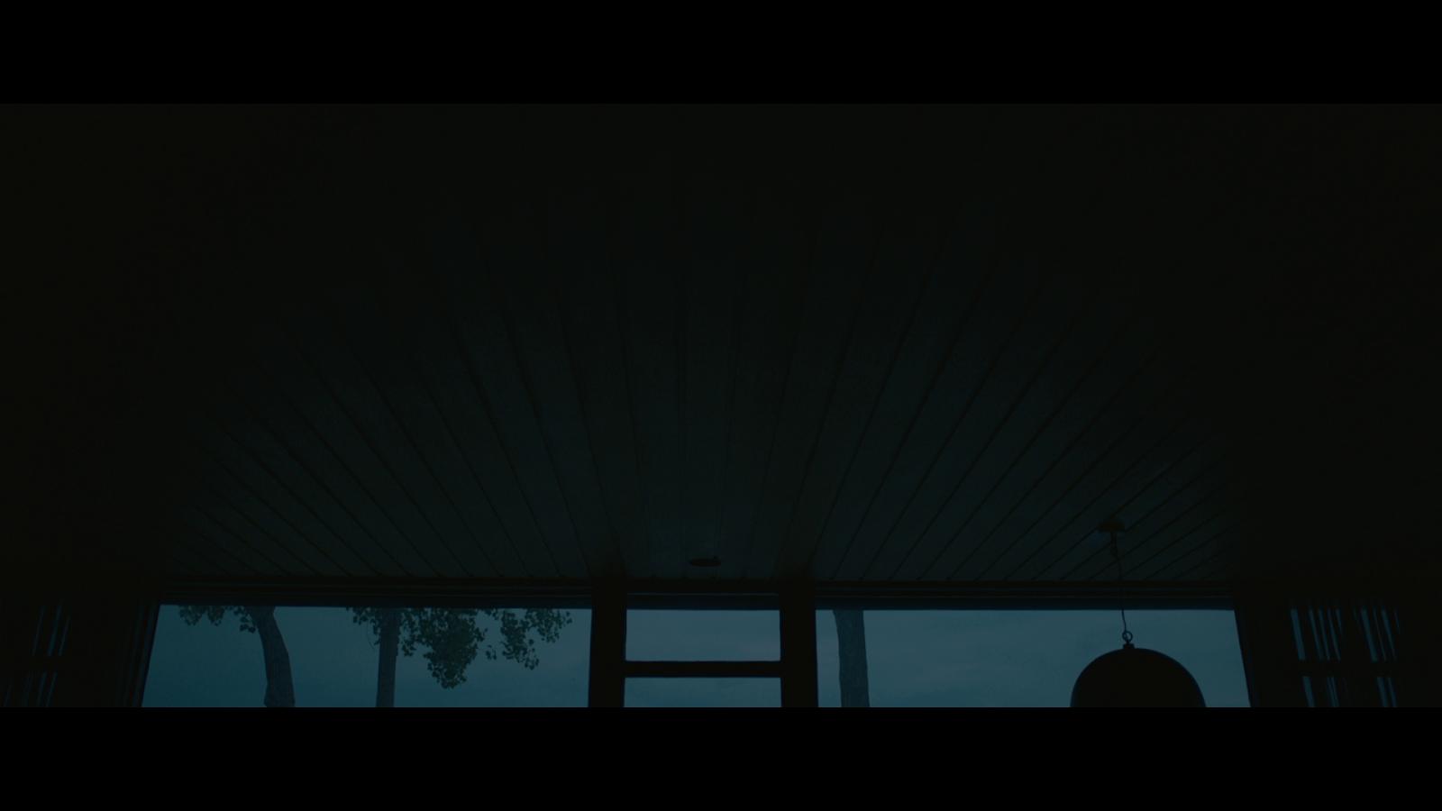 La LLegada (2016) 1080p BD25 LATINO 3