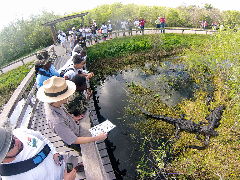 National Park Service Everglades Tour