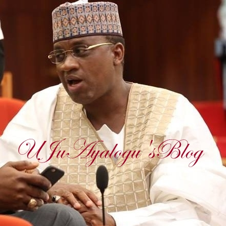 Plot To Impeach Osinbajo, Makes Saraki Acting President: Senator Marafa Breaks Silence