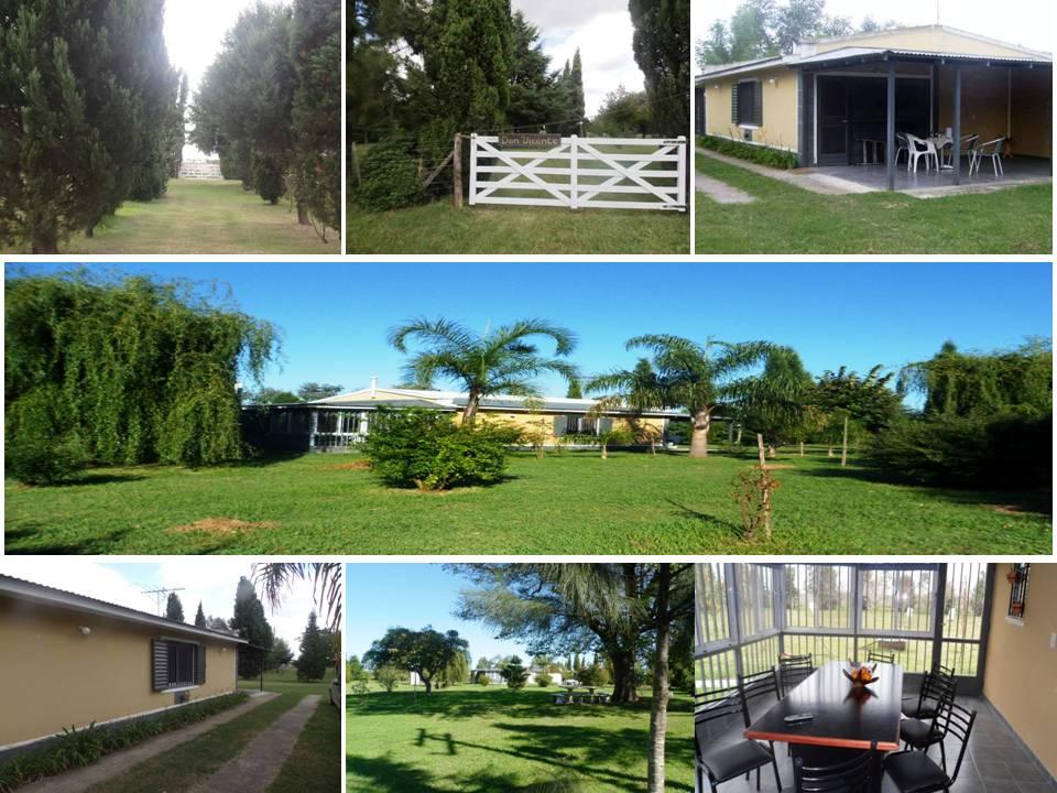 Scorpios consultoria 20 de junio pontevedra campo 22 has ideal cultivos intensivos con casa en - Alquiler casa vilaboa pontevedra ...