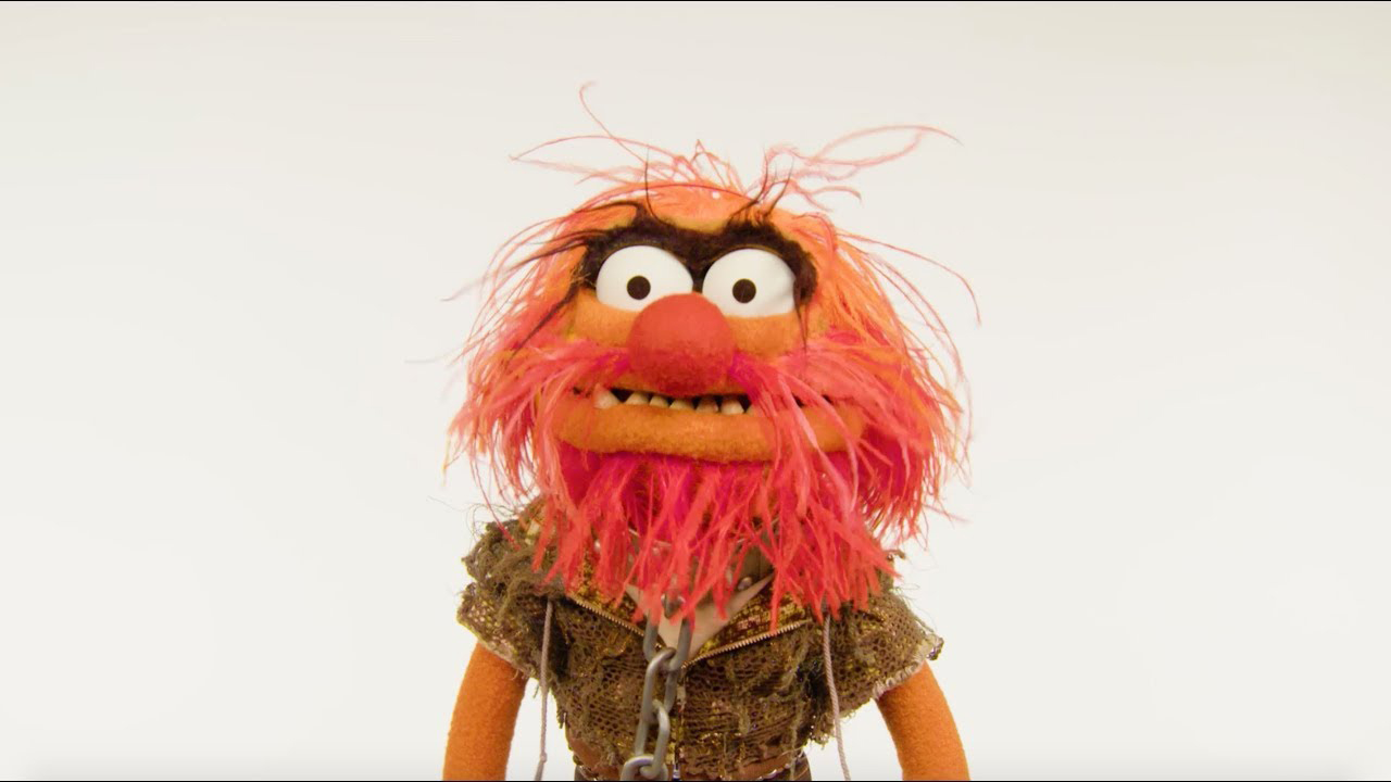 Muppet stuff muppet thought of the week ft animal - Animal muppet images ...