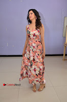 Actress Richa Panai Pos in Sleeveless Floral Long Dress at Rakshaka Batudu Movie Pre Release Function  0062.JPG
