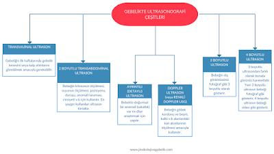 hamilelikte ultrason çeşitleri