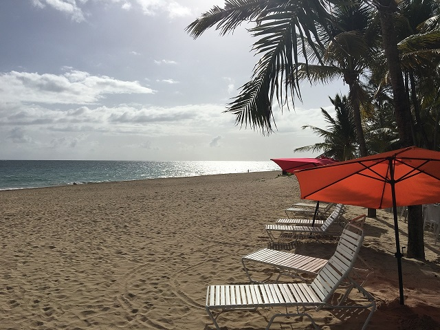 Early to bed and early to rise - means the beach is all ours!