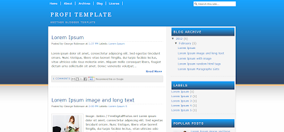 Profi Theme Blogger Template