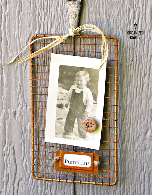 Grater/Slaw Cutter Photo Display Ideas #thriftshopmakeover #grater #slawcutter #photodisplay #repurpose #repurposed #upcycle #rubontransfer