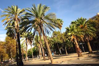 La Rambla del Raval a Barcelona