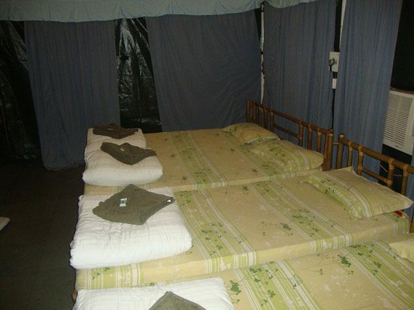 X thrill tent