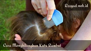 cara menghilangkan kutu rambut dan telurnya secara alami dan permanen tanpa merusak rambut