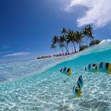 Pengertian dan Jenis Laut