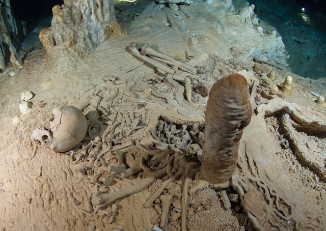 Stalagmite reveals age of human bones in south Mexico as 13,000 years old
