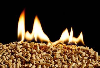 Diferentes tipos de biomasa