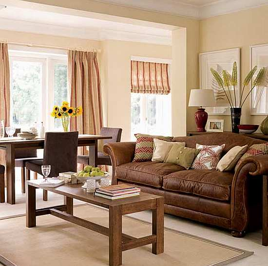 Living Room Design: Brown Living Room