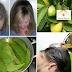 """وصفة من أوراق الجوافة تُوقف تساقط الشعر 100٪ وتجعله ينمو بشكل """"جنونيّ""""!"""