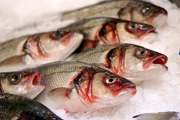 Более 20 жителей Башкирии заразились опасным паразитом при употреблении рыбы