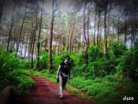 Enjoy di Jalur Pendakian Bersama Anak-Anak