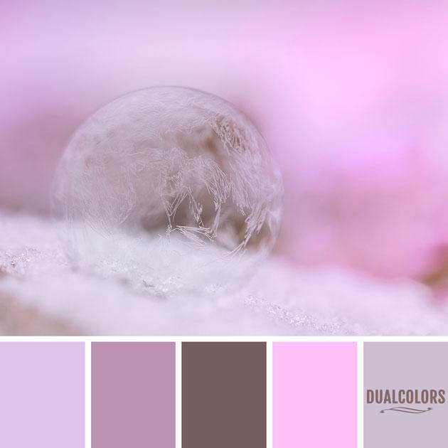 color_paleta_123