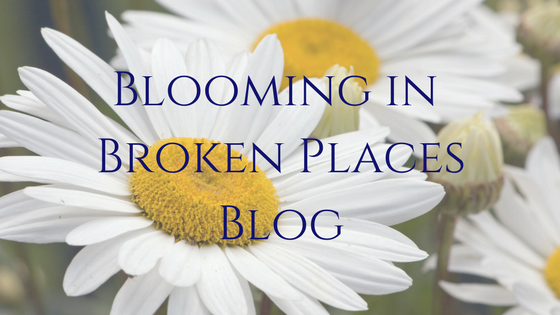 BLOOMING IN BROKEN PLACES