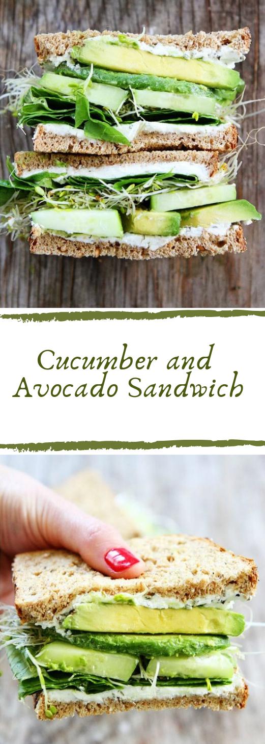 Cucumber and Avocado Sandwich #cucumber #vegetarian