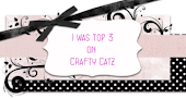 Top3 Crafty Catz