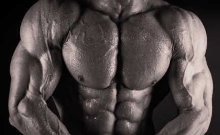 Blasting the Chest Bodybuilding diet