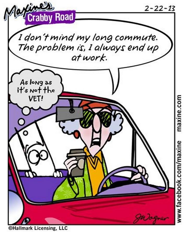 maxine cartoons funny humor jokes road driving quotes assorted six cartoon winter drive crabby long comics acid summer aunty learn
