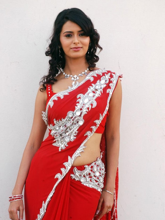 Meenakshi Dixit Saree Images - Sexy Collection Ever Before
