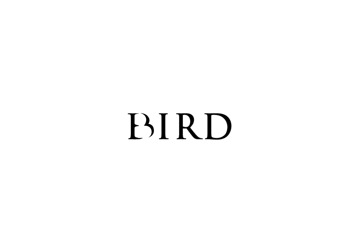 Bird text logo design inspiration