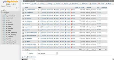 Ubah Awalan Tabel WordPress Saat Instalasi
