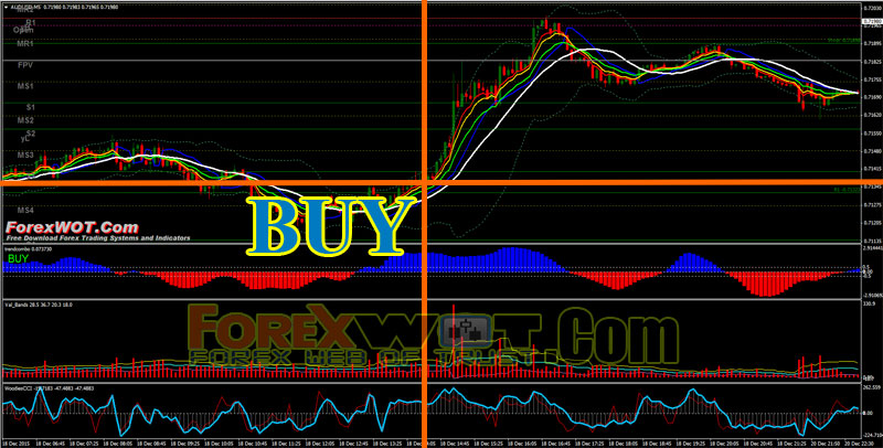 80 accurate forex system