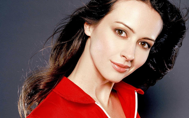 Amy Acker HD Wallpapers |Amy Acker Images