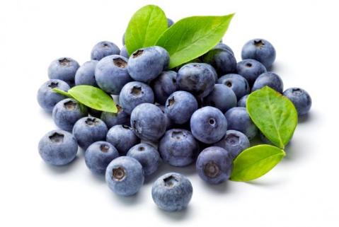 5 Makanan Pencegah Penuaan Dini