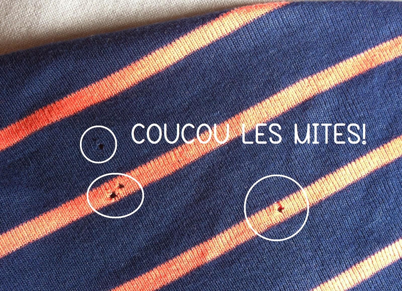 100 Incroyable Conseils Trou De Mite Vetement Coton